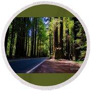 Redwoods Road Round Beach Towel