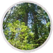 Redwoods Trees Forest Art Prints Baslee Troutman Round Beach Towel