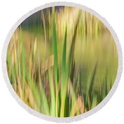 Reed Abstract II Round Beach Towel