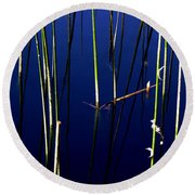 Reeds Of Reflection Round Beach Towel by Chris Brannen