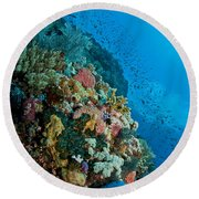 Reef Scene With Corals And Fish Round Beach Towel