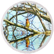 Refection Of Cedar Waxwing Round Beach Towel