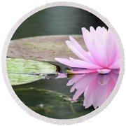 Reflected Water Lily Round Beach Towel