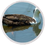 Reflecting Duck Round Beach Towel