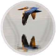 Reflecting Flight Round Beach Towel