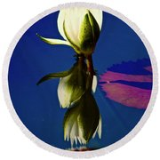 Reflection Of A Water Lily Round Beach Towel