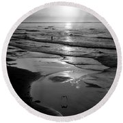 Reflection Of Bird In Flight Round Beach Towel