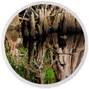 Reflection Of Cypress Knees Round Beach Towel