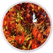 Reflection Of The Season Round Beach Towel