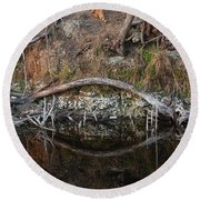 Reflections Iguana Round Beach Towel