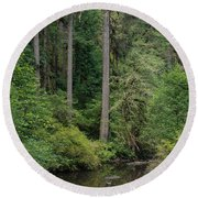 Reflections In Silver Falls State Park Round Beach Towel