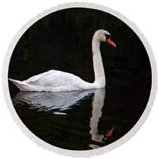 Reflections Of A Swimming Swan Round Beach Towel