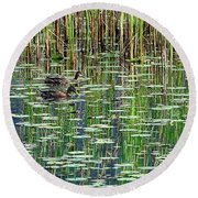 Reflections On Duck Pond Round Beach Towel