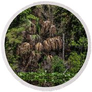 Reflective Colors Of Nature I I Round Beach Towel