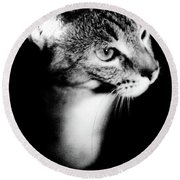 Regal Feline Round Beach Towel