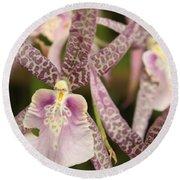 Regal Orchids Round Beach Towel