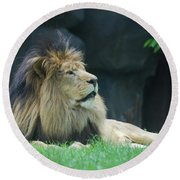 Relaxing Lion With A Thick Black Fur Mane Round Beach Towel