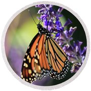Relaxing Monarch Butterfly Round Beach Towel