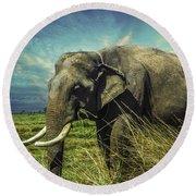 Remember Elephant Round Beach Towel