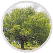 Remember The Trees Round Beach Towel
