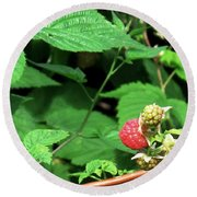 Remembering One Sweet Rasberry Round Beach Towel