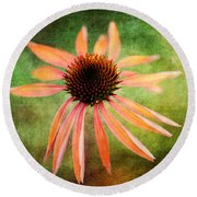Remembering Summer Round Beach Towel