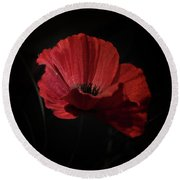 Remembrance Poppy 1 Round Beach Towel
