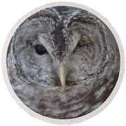 Rescue Owl Round Beach Towel