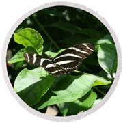 Resting - Black And White Butterfly Round Beach Towel