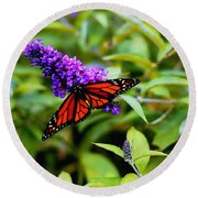Resting Butterfly 2 Round Beach Towel