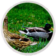 Resting Ducks Round Beach Towel