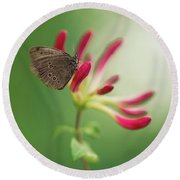 Resting On The Pink Plant Round Beach Towel
