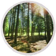 Retzer Nature Center Pine Trees Round Beach Towel