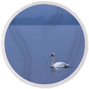 Rhapsody In Blue. Mute Swan Round Beach Towel
