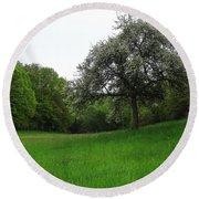 Rhineland-palatinate Summer Meadow Round Beach Towel