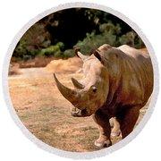 Rhino Round Beach Towel by Steve Karol