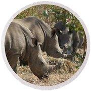 Rhinos,  Zambia Round Beach Towel