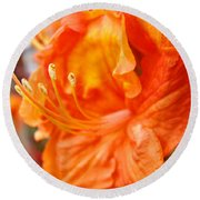 Rhodies Art Prints Orange Rhododendron Flowers Baslee Troutman Round Beach Towel