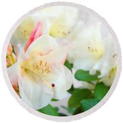 Rhodies Art Prints White Pink Rhododendrons Baslee Troutman Round Beach Towel