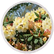 Rhodies Flowers Art Yellow Orange Rhododendrons Garden Round Beach Towel