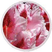 Rhodies Pink Fine Art Photography Rhododendrons Baslee Troutman Round Beach Towel