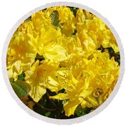 Rhodies Yellow Rhododendrons Art Prints Baslee Troutman Round Beach Towel