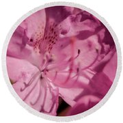 Rhododendron-close Up Round Beach Towel