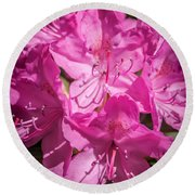 Rhododendron-close Up1 Round Beach Towel