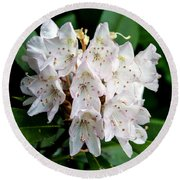 Rhododendron Family Of Flowers Round Beach Towel