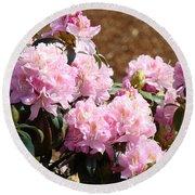 Rhododendron Garden Art Print Pink Rhodies Flowers Baslee Troutman Round Beach Towel