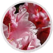 Rhododendrons Art Prints Floral Pink Rhodies Canvas Baslee Troutman Round Beach Towel