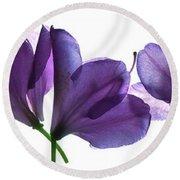 Rhody Ballet-purple Round Beach Towel