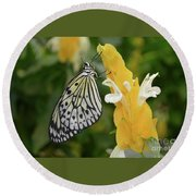Rice Paper Butterfly Round Beach Towel