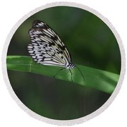 Rice Paper Butterfly On A Long Daylily Leaf Round Beach Towel